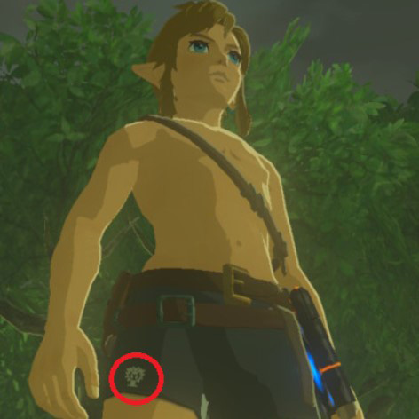 Anecdote du jeu Breath of the Wild