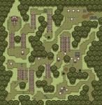 Forêt des squelettes