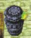 Sentinelle dans Phantom Hourglass