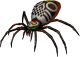 Skulltula dans Twilight Princess