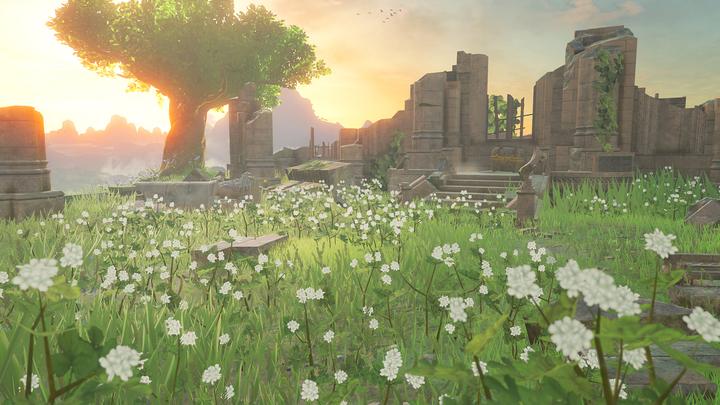 Des ruines à proximité du Temple du Temps (Screenshot - Screenshots de l'E3 2016- Breath of the Wild)