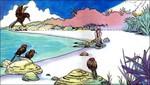 Link échoué sur la plage de Cocolint