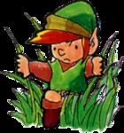Link sauvage dans les hautes herbes