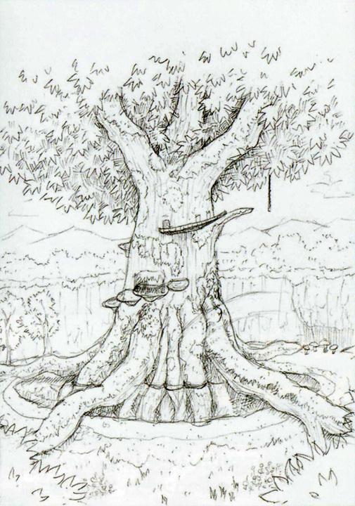 Le grand arbre (Artwork - Concept Arts d'Hyrule - Skyward Sword)