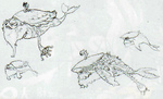 Narisha possédé par Palaparas