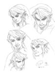 Expressions faciales sévères de Link