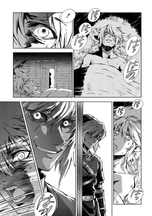 Extrait japonais du tome 6 du manga de Twilight Princess