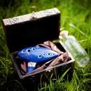 Ocarina du Temps 12 trous avec recueil de chansons